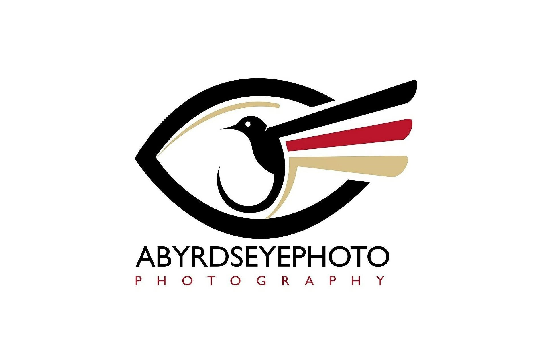 aByrdseyephoto Weddings & Engagement Photography, Toledo Ohio