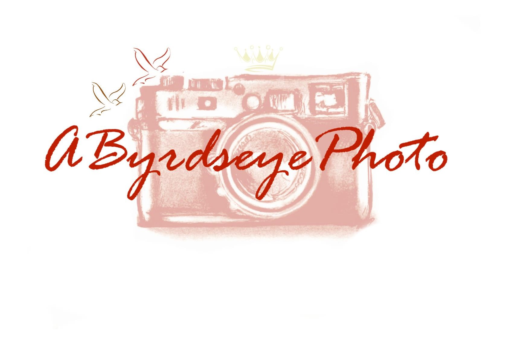 aByrdseyephoto Newborn & Maternity Portrait Sessions, Toledo Ohio